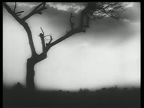 Suraj Jara Aa Pass Aa - Best Hindi Classic Song - Shammi Kapoor, Raaj Kumar, Mala Sinha - Ujala (1959)