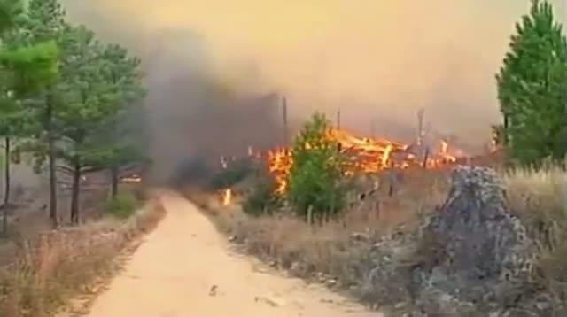 Crews Battling Argentina Forest Fires
