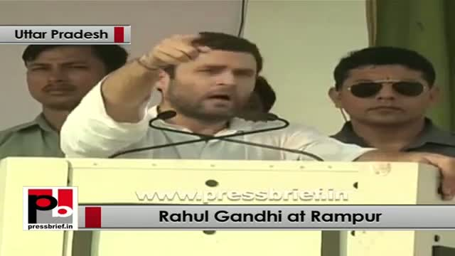 Rahul Gandhi in Rampur: Congress will form a government of youth in 2014