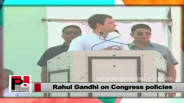 Rahul Gandhi on Congress policies: We see Hindustan as a bouquet with so many flowers