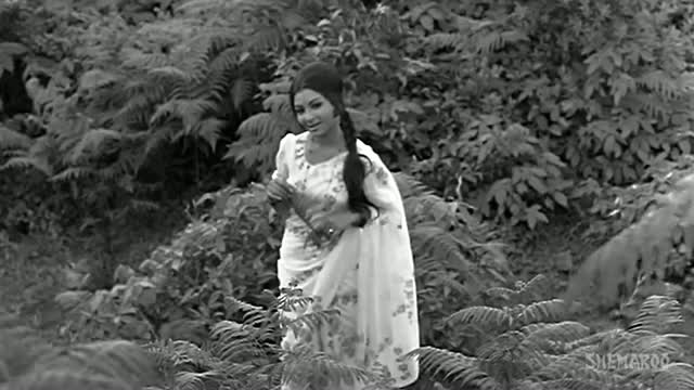 Kuchh Dil Ne Kaha - (Old is Gold) Dharmendra - Sharmila Tagore - Anupama - Lata - Evergreen Hindi Songs