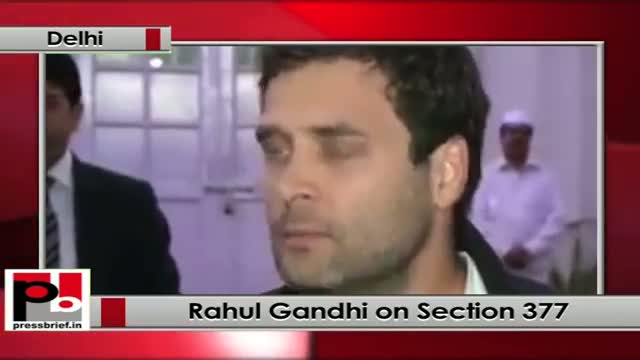 Rahul Gandhi on Section 377: I agree more with High Court