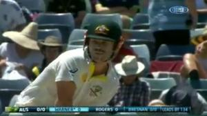 David Warner 112 Highlights in 2nd Innings - 3rd Test Perth (Ashes 2013)
