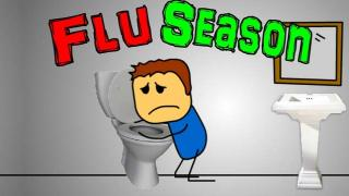 Stomach Flu - Flu Season