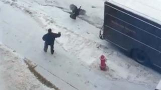 Wild Turkey Chases Delivery Guy Around Truck
