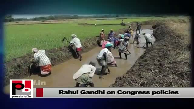 Rahul Gandhi: We have implement to many policies to empower the youth
