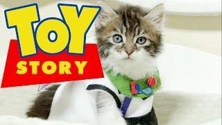 Disney Pixar's Toy Story (Cute Kitten Version)