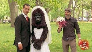 Bridezilla? No, just Gorilla Bride - Just for Laughs Gags