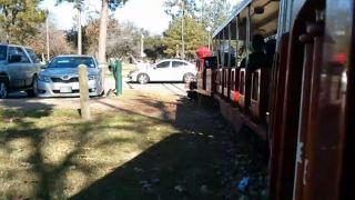 Little Train Has Big Collision - Hermann Park Train Collision