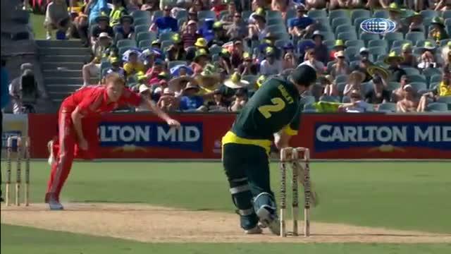 England Wickets Taken v Australia - Aus vs Eng 5th ODI 2014 Adelaide - 26 January 2014