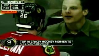 Hockey Fan Taunts Injured Player And Gets Instant Karma