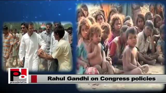 Rahul Gandhi: Congress has given the opportunity to every single citizen of India