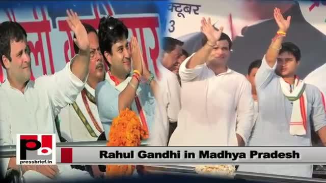 Rahul Gandhi: NDA always tries to block poor welfare schemes