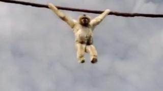 Monkey Poops On Zoo Visitors
