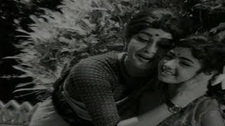Nenu Manishine Movie Songs - Chinnari Varahala Feat. Kanchana And Baby Sridevi  - Telugu Cinema Movies