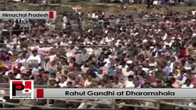 Rahul Gandhi: Congress party belongs to all