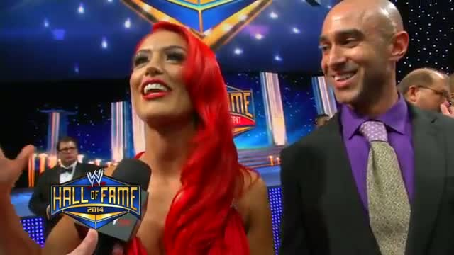 WWE Superstars and Divas walk the red carpet at the 2014 WWE Hall of Fame Ceremony