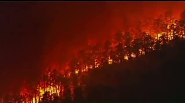 Raw: New Jersey Forest Fire Contained