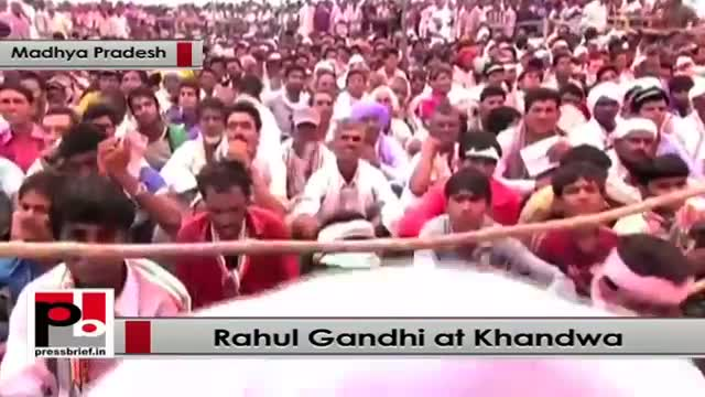 Rahul Gandhi : Forest act is not being implemented properly in Gujarat