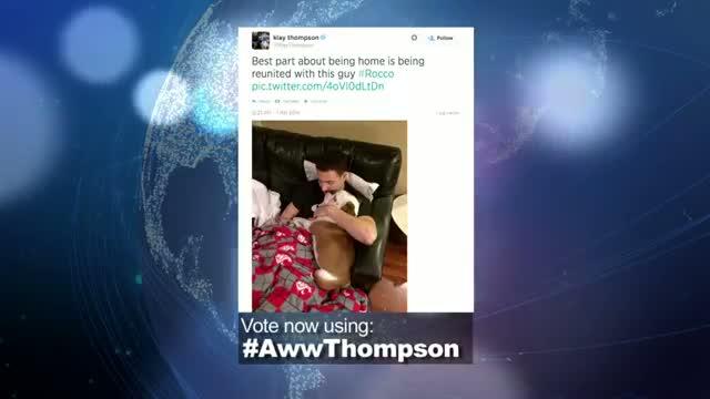 """2014 NBA Social Media Awards """"Aww"""" Award Nominee: Klay Thompson"""