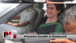 'Priyanka Gandhi and Rahul Gandhi can work together to rebuild congress'