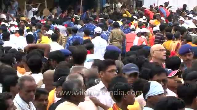 Puri drenches in festival fervour : Jagannath Rath Yatra