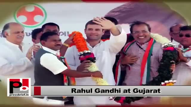 Rahul Gandhi an energetic leader with a forward looking vision and innovative missio