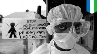 Deadly Ebola virus outbreak kills more than 600 in western Africa, continues to spread