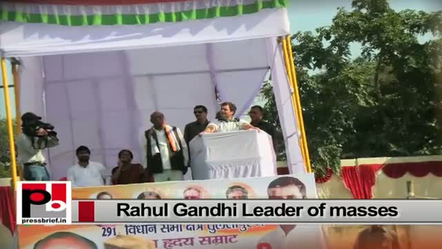 Rahul Gandhi a sincere and strong Congress leader with innovative vision