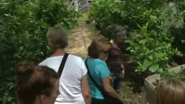 Agritourism a Boon for Small Farms