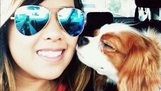 EBOLA AIRBORNE OUTBREAK RANT! NINA PHAM TEXAS NURSE POSITIVE! DOG BENTLEY ISOLATED!