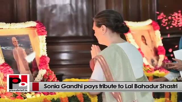Congress President Sonia Gandhi always concerned over crimes against women