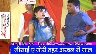 Misai e gori tohar arwal main gal | Chhotu Chhaliya | 2014 New Hot Bhojpuri Song