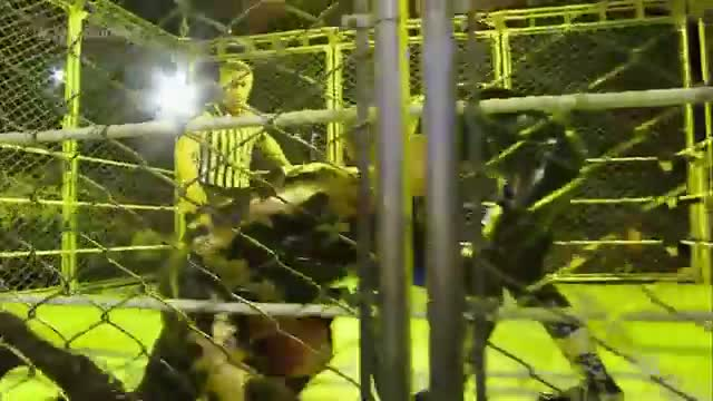 The Usos vs. Gold & Stardust - WWE Tag Team Championship Steel Cage Match: WWE SmackDown, Nov. 7, 2014