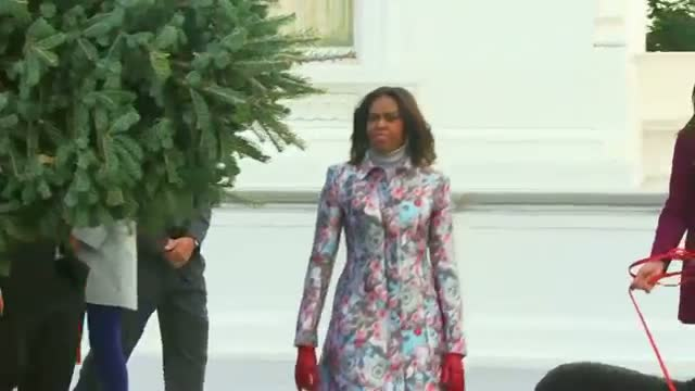 Christmas Tree Arrives at White House