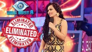 Bigg Boss 8: Renee Dhyani ELIMINATED!