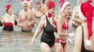 Hardy 'Berlin Seals' Take Traditional Dip Video