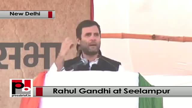 Delhi polls - Rahul Gandhi takes on BJP, PM Modi, AAP at Congress rally