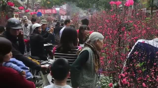 Asia Prepares for Year of the Sheep