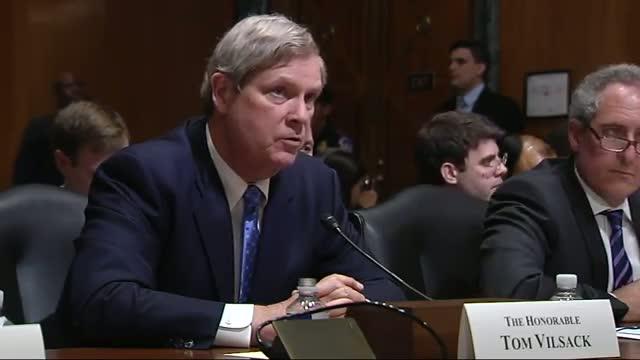 Senator's Phone Plays 'Let It Go' at Hearing