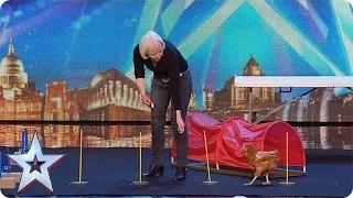Britain's Got Talent 2015 - Marion and her chicken tackle an agility course   Audition Week 1