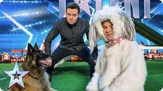 Britain's Got Talent 2015 - Can David Walliams beat a dog in an agility test?   Audition Week 1