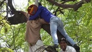 Farmer From Rajasthan Hangs Himself at AAP Rally