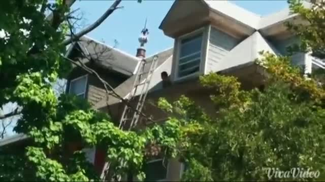 Toddler Rescued From Philadelphia Roof