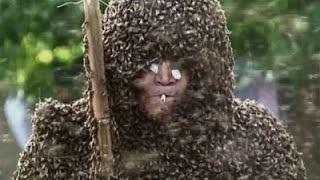 Man Breaks Bee-Wearing Record