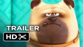 The Secret Life of Pets Official Teaser Trailer #1 (2016) - Jenny Slate, Kevin Hart Movie HD