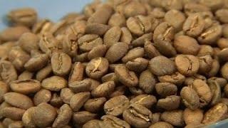 California Grown Coffee Starting to Percolate