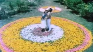 Chinna Ponnu (Romantic Duet Song) - Karthik, Ilaivarasi, S.V Shekher - Enga Veetu Ramayanam