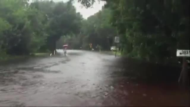 Tampa Area Drenched by Rain