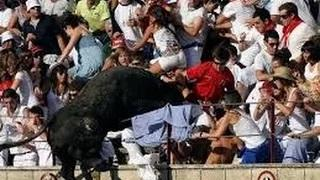 Bull Attacks People Bull Jumps Into Crowd Bull Riding Accidents